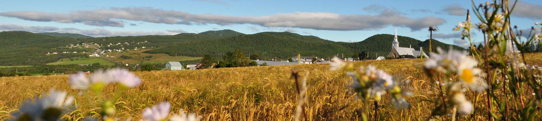 Paysages mrc de charlevoix for Emploi paysage